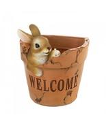Welcoming Bunny Planter - $13.69