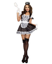Maid For You Costume - $20.99