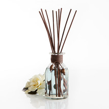 Pier 1 Imports concentrated Reed Diffuser Set Sea Air  - €30,36 EUR