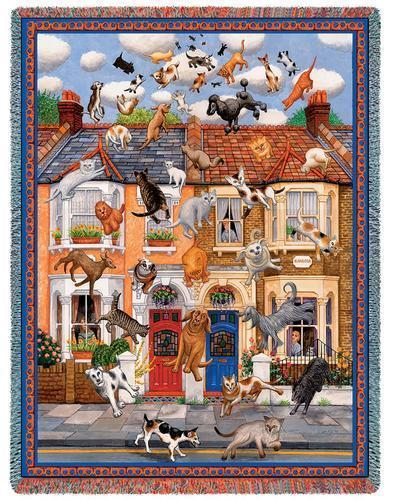 Throw raining cats and dogs  1785 t