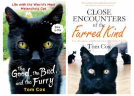 Lot of 2 Tom Cox CAT Books : Good, the Bad, and the Furry -and- Close En... - $22.95