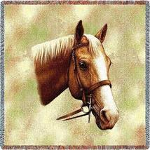 54x54 Palomino Horse Lap Square Jacquard Throw Blanket - $42.95