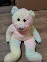 1999 Original Beanie Buddy Rainbow Groovy 1st Bear With a Colored Flocked Nose - $14.85