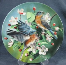 The Bluebird Collector Plate Kevin Daniel Birds of Your Garden 1986 Knowles - $17.95
