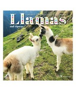 Llamas Mini Calendar 2021 w - $10.99