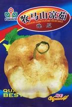 1 pack 30+seeds Sweet potato Seeds, jicama / yam bean seeds, garden frui... - $1.96
