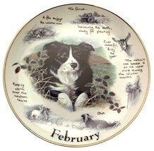 Danbury Mint Border Collie plate February by Paul Doyle CP2172 - $38.21