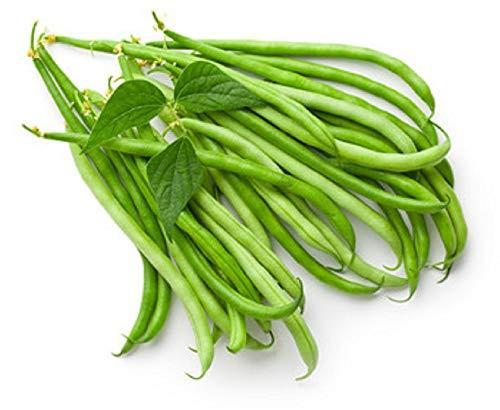 Sow No GMO Bean Pole Kentucky Wonder Green Snap String Beans Non GMO Heirloom Ga - $5.71