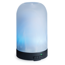 Frosted Glass Diffuser 100ml - €39,22 EUR