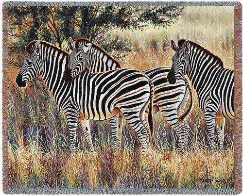 Throw zebra 70x53