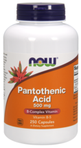 Pantothenic Acid 500mg Now Foods 250 Caps - $26.90