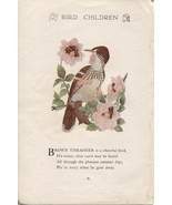 Elizabeth Gordon's Bird Children: Brown Thrasher. M.T.Ross 1912 lithogra... - $13.71