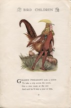 Elizabeth Gordon's Bird Children: Pheasant. M.T.Ross 1912 lithograph print - $12.00