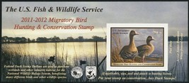 RW78A, White-Fronted Geese Federal DUCK Stamp Self-Adhesive Pane - Stuar... - $32.00