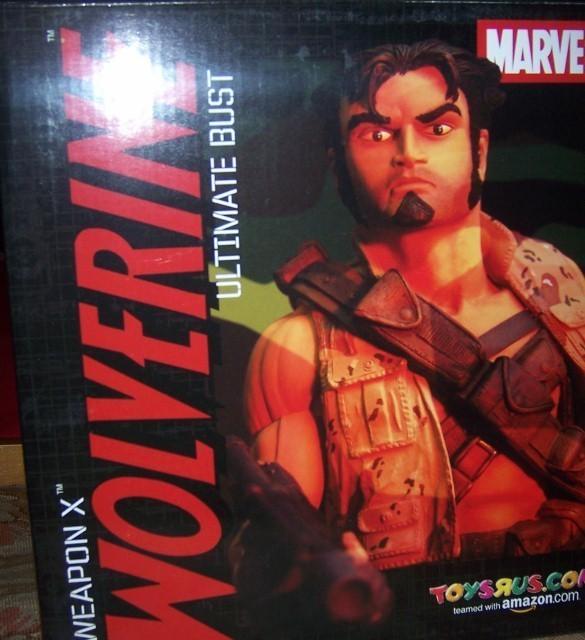 Wolverine bust  585x640