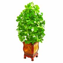 Schefflera Artificial Plant Decorative Planter (Real Touch) - $123.90
