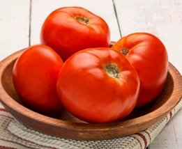 250 Seeds of Dixie Red Vfffna Hybrid - Tomatoes Mid Season - $98.90
