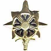Primary image for US Army Intelligence Badge
