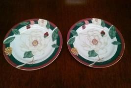 Set of 2 Tienshan Magnolia Fine China Salad Luncheon Plates - $18.69