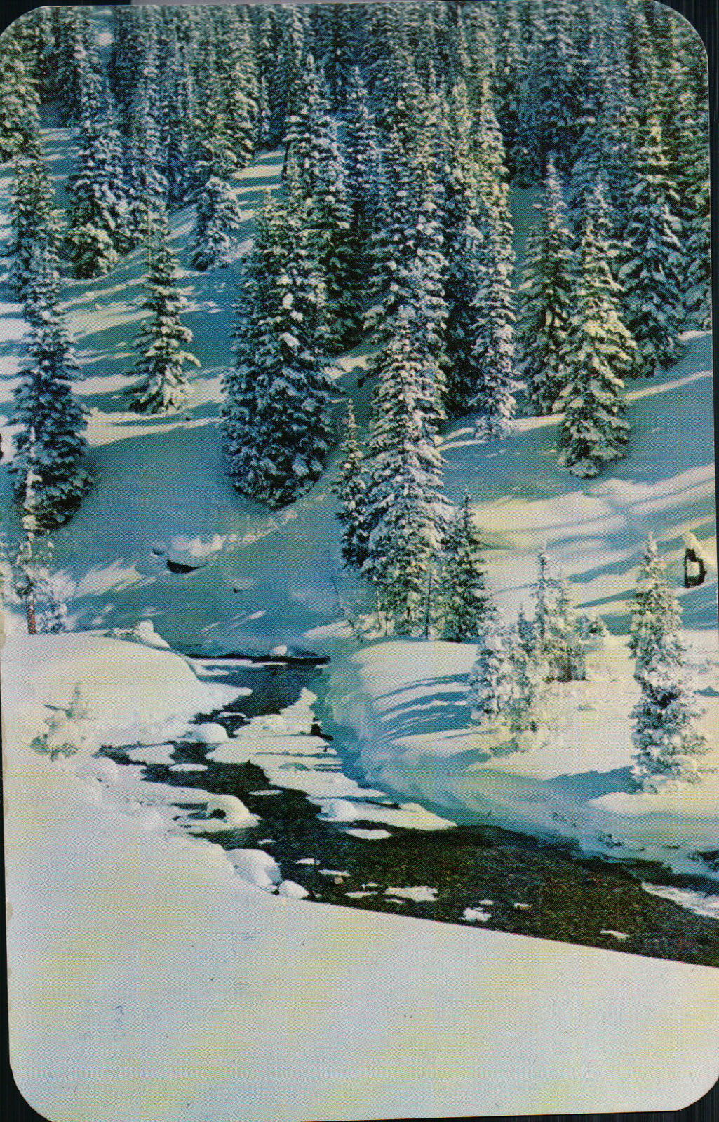 Vintage Bear Creek Denver Mountain Parks and 33 similar items