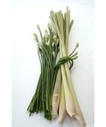 LEMONGRASS 8oz - Candle Fragrance FO - $10.98