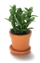 DOLLHOUSE MINIATURE 1:12 SCALE HOUSE PLANT #A1785 - $5.93