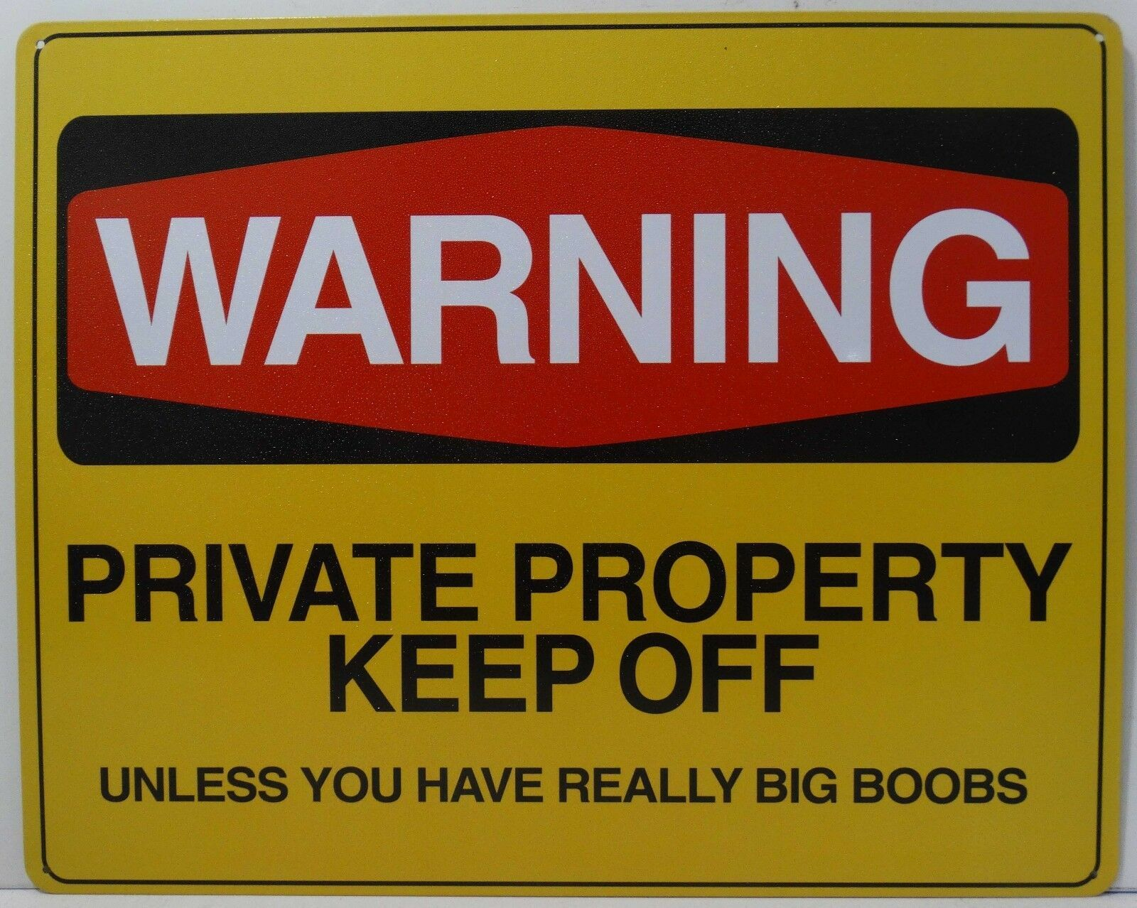 Warning Private Property Keep Off Unless You Have Big Boobs Humor Metal Sign