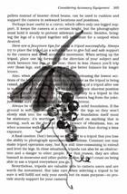 Akimova: GRAPE, original, ink,  watercolor, Chinese brush - $7.00