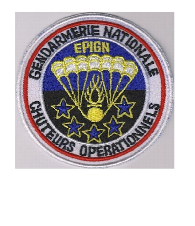France police nationale gendarmerie epign swat halo french national police 4 x 4 in 9.99
