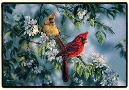 27x18 CARDINAL Bird Flower Floral Doormat Floormat   - $26.50