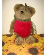 Boyds Bears Smith Applewish Plush Bear  - $14.99