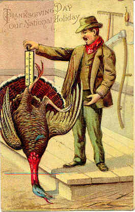 The Thanksgiving Turkey Vintage Post Card