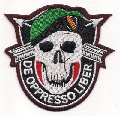 Primary image for US Army De Oppresso Liber Army Special Forces Green Berets Patch