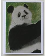 Panda Bear Wildlife Art Note Card Stationery Cori Solomon - $12.50