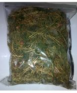 Jamaican Cerasee with vine -(Air dried,Organic & Sprayfree)  7 in X 8 in... - $20.00
