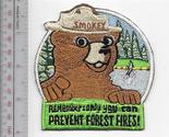 Fs smokey says   remember  only you can prevent wildfires   us forest service 9.99 thumb155 crop