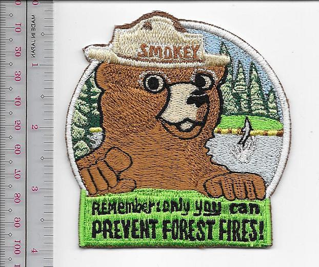Ey the bear usfs smokey says   remember  only you can prevent wildfires   us forest service 9.99