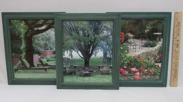 Lot of 3 Garden Patio Tree Pictures Photos In G... - $24.74