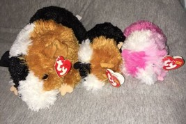 Ty PATCHES PINKY Multicolored Guinea Pig Beanie Baby Classic Plush Retir... - $66.32