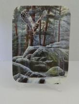 Bradford Northwoods Grandeur Awaits a Woodland Paradise Third Issue Plate Owl - $16.71