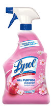 Lysol Power All Purpose Cleaner - $5.00