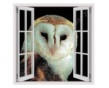 CANVAS (Rolled) Night Owl Fake 3D Window Oil Paint Wall Art Pictures Paintings