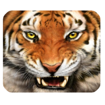 Mouse Pad New Animal Editions Tiger Lion Roar Face For Game Animation Fa... - $75,95 MXN
