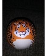tiger baseball nation museum of natural history - $17.99