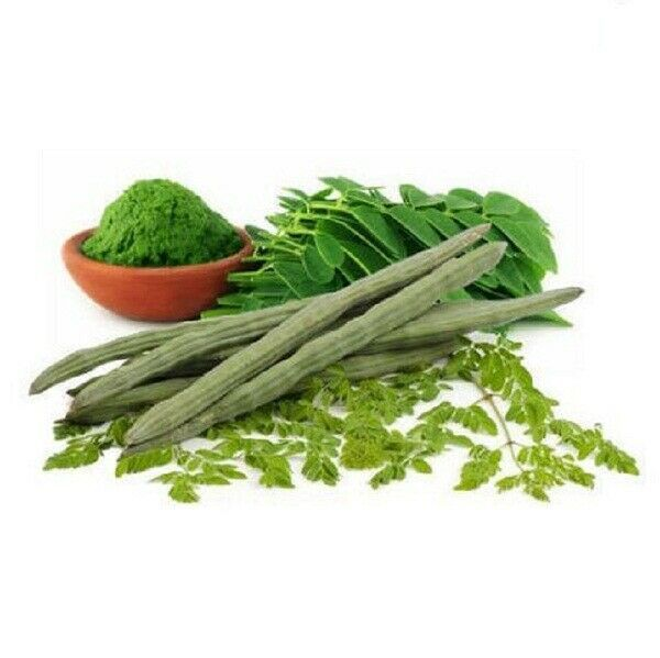 Primary image for Organic Natural Dried Moringa Oleifera Leaf/DrumStick Tree Leaves From Ceylon