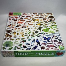 EeBoo A Rainbow World 1000 Piece Jigsaw Puzzle New Open Box Pieces Sealed - $22.95