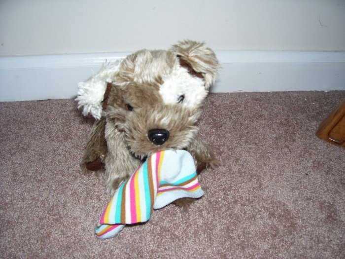 Animal alley puppy plush with sock