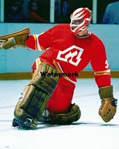 NHL 1970's Atlanta Flames Goalie Dan Bouchard Flame Mask Color 8 X 10 Ph... - $8.36