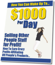 How You Can Make Up To $1000 Per Day - ebook - $1.79