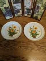 """2 Mikasa Garden Club Petunias 10 3/4"""" Dinner Plates - $8.79"""